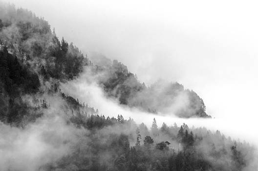 Mountain in the mist by Shawn Devore