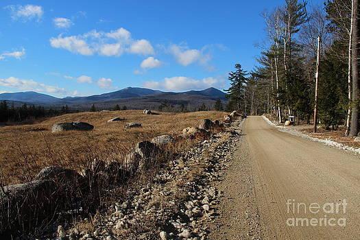 Mountain Meadow by Ellen Ryan