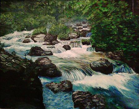 Mountain River by Marina Lavrova