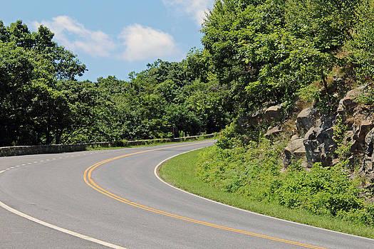 Mountain Road by Carolyn Ricks