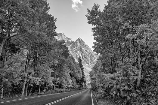Priya Ghose - Mountain Road In Autumn