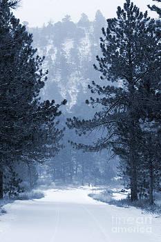 Steve Krull - Mountain Road