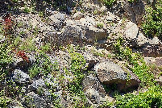 Mountain Rocks by Carolyn Ricks