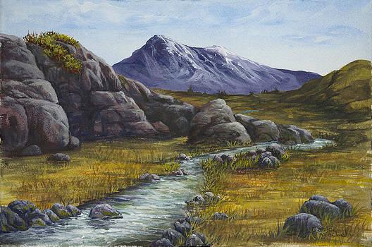 Darice Machel McGuire - Mountain Stream