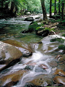 Mountain Stream by Ed Cooper