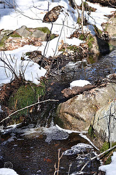 Healing Woman - Mountain stream in winter