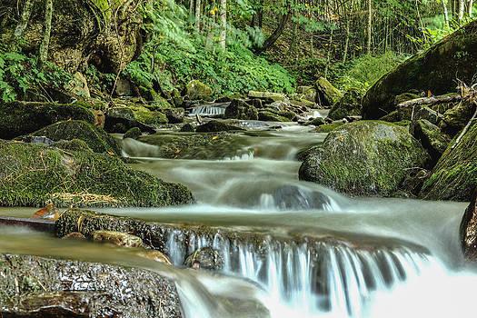 Jimmy McDonald - Mountain Stream