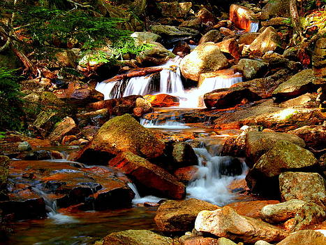 Mountain Stream by Patrick Lombard