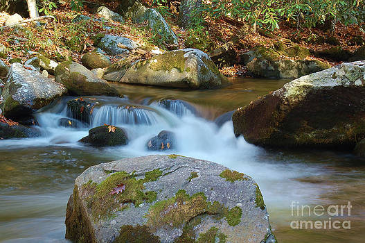 Mountain Stream by Patrick Shupert