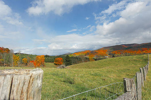Mountain view by Helen Ellis