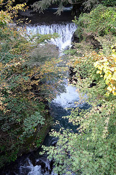Mountain watercourse by Jeremiah Welsh