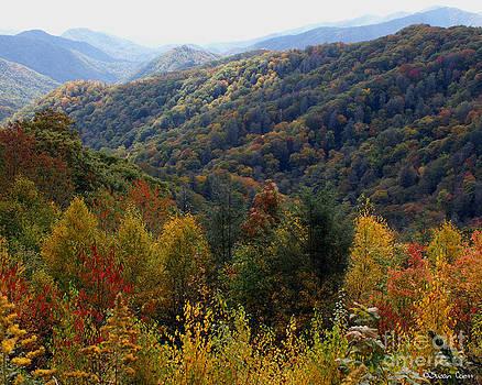 Mountains Leaves by Susan Cliett