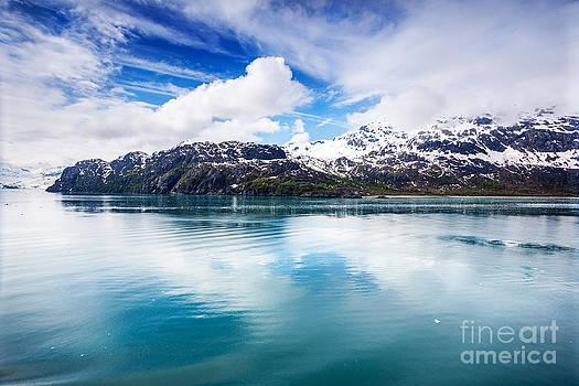 Jo Ann Snover - Mountains meet ocean in Glacier Bay