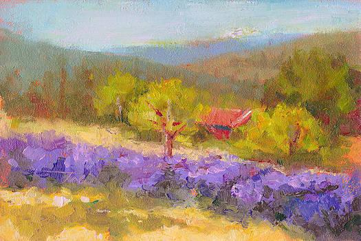 Mountainside Lavender   by Talya Johnson