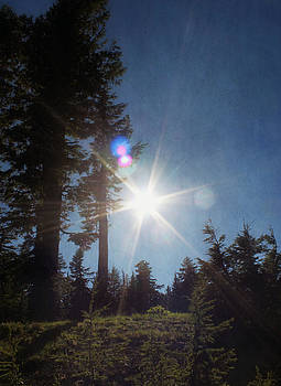Mountainside Sunburst by Melanie Lankford Photography