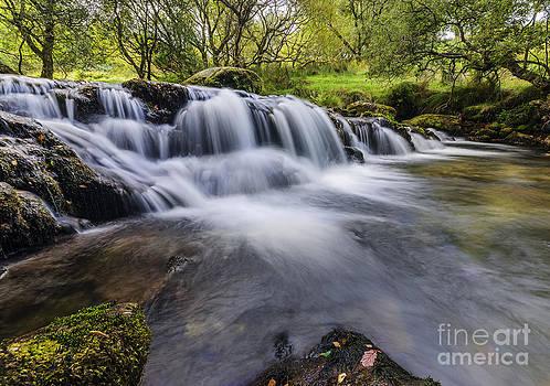 Darren Wilkes - Mountian Water