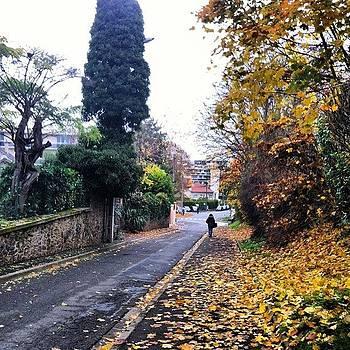 #mourecourt #gloriousfallwalk by Sarah Dawson