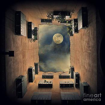 Mr Moon by Sylvia Lakoma