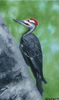 Mr. Pileated by Brenda Everett