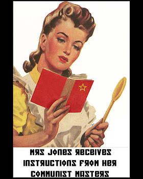 Mrs Jones Receives Her Instructions by Jonathon Prestidge