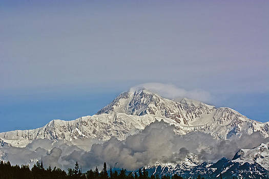 Mt. McKinley View by Stephen  Johnson
