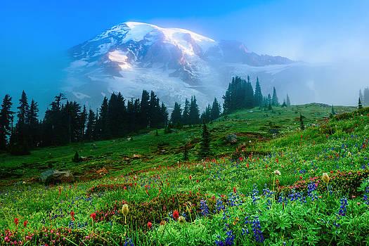 Chris McKenna - Mt. Rainier and Wildflowers