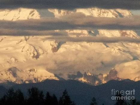 Mt Rainier Dusk Time by Pamela Roberts-Aue