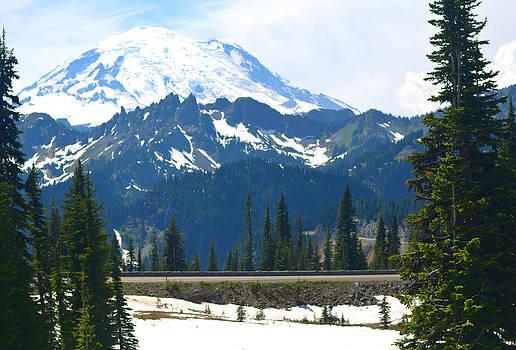 Mt. Rainier by Emelyn McKitrick