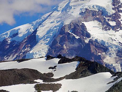 Mt Rainier From Spray Park by Scott Nelson