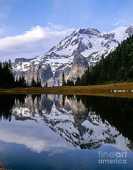 Mt. Rainier on Aurora Lake by Tracy Knauer