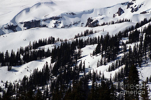 Deanna Proffitt - Mt Rainier Slopes