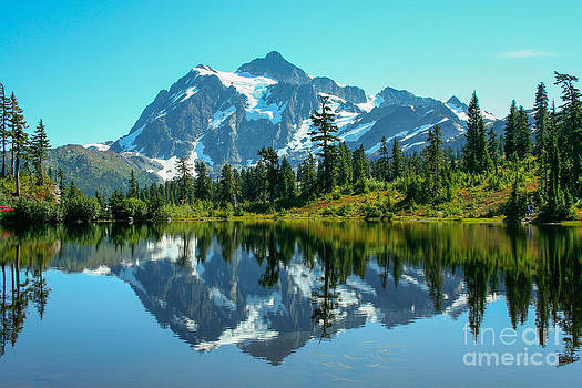 Mt Shuksan by Denise Lilly