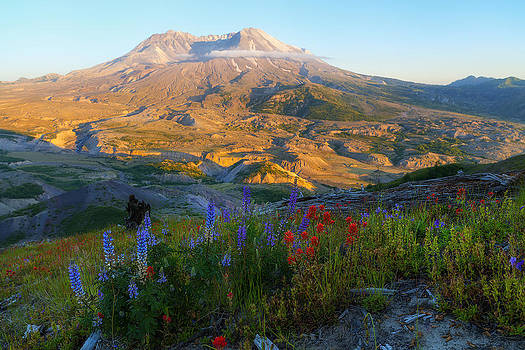 Mt. St. Helens Golden Hour by Ryan Manuel