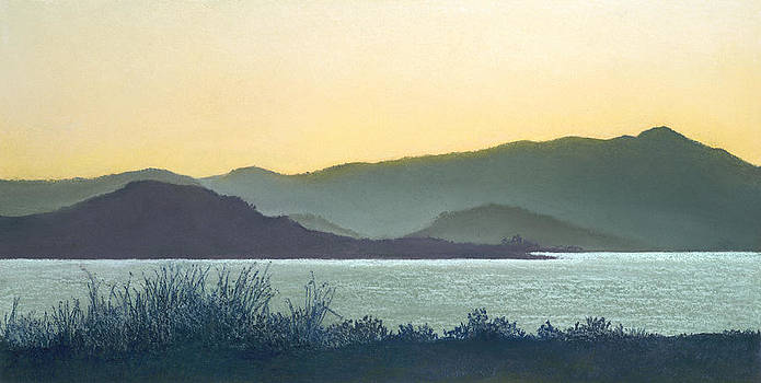 Mt. Tamalpais California by Martha J Davies