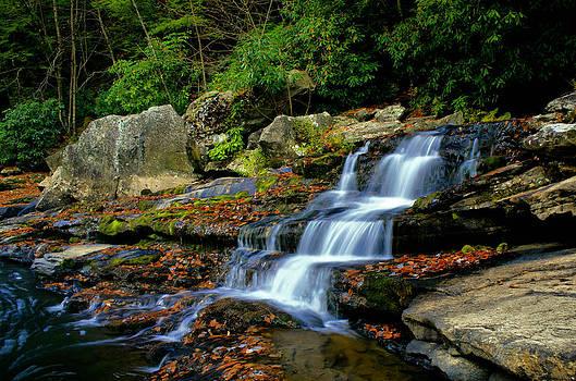 Matthew Winn - Muddy Creek Falls in Autumn