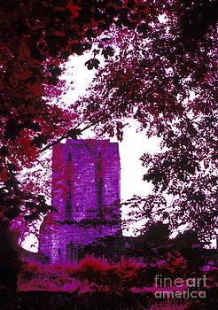 Mugdock Castle IR by Alan Oliver