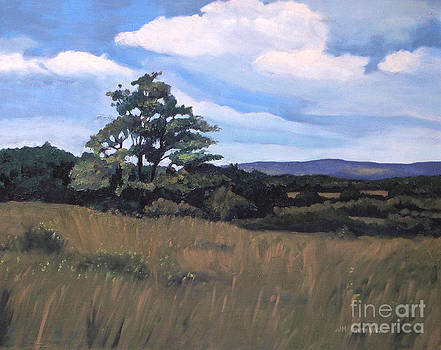 Mulmar Hills No 2 by Joan McGivney