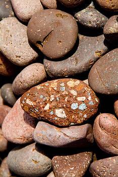 Devinder Sangha - Multicolor Pebble