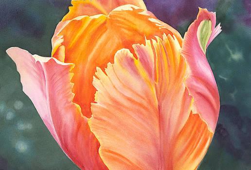 Multicolored Tulip - transparent watercolor by Elena Polozova