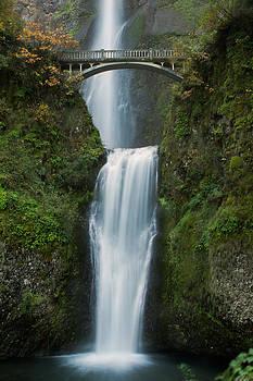 Multnomah Falls by Teresa Hunt