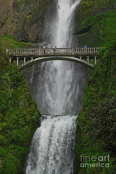 Multnomah Falls by Tina Osterhoudt