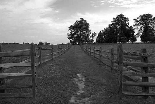 Mummas Cemetery With Gate by M Hess