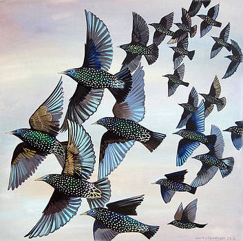 Murmuration by Jane Tomlinson