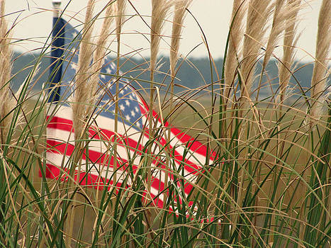 Murrells Inlet Old Glory 2 by Making Memories Photography LLC