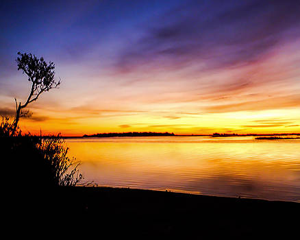 Terry Shoemaker - Murrells Inlet Sunrise 01_20_15