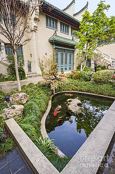 Jamie Pham - Museum Koi - courtyard of the Pacific Asia Museum in Pasadena.