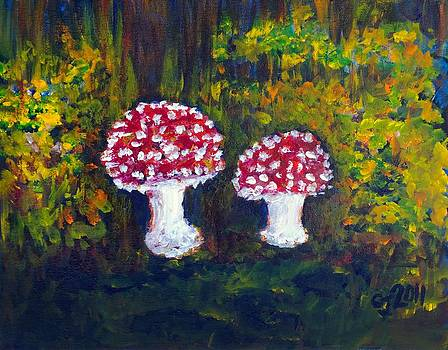 Mushrooms by Catherine Jeffrey