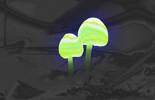 Daniel Furon - Couple of Mushrooms