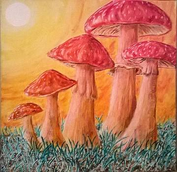 Mushrooms by John Fierro