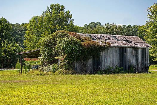 Bill Swartwout Fine Art Photography - Muskrat Town Deserted Crib